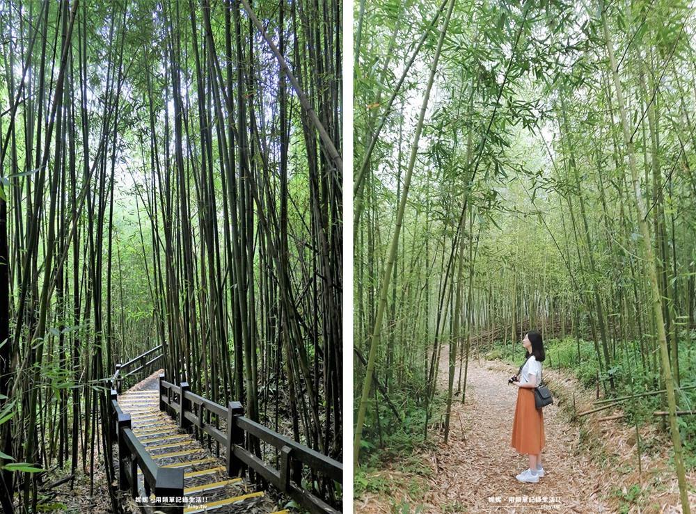 shizhuo-trails-15-1