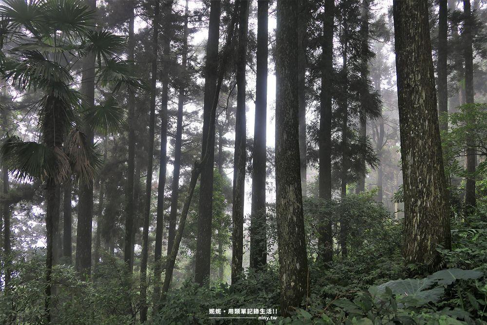 shizhuo-trails-23