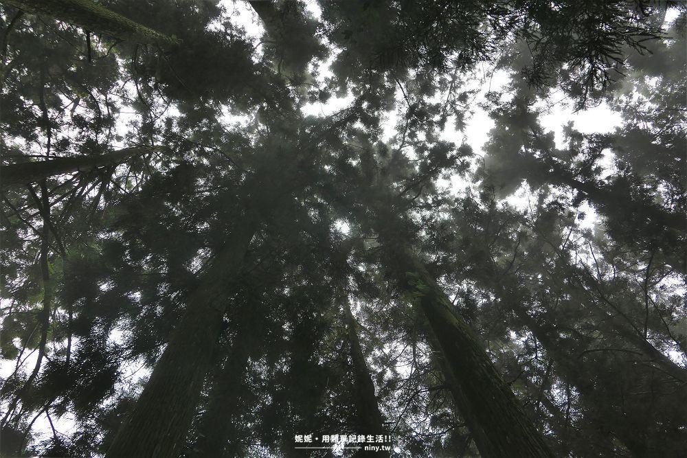 shizhuo-trails-24