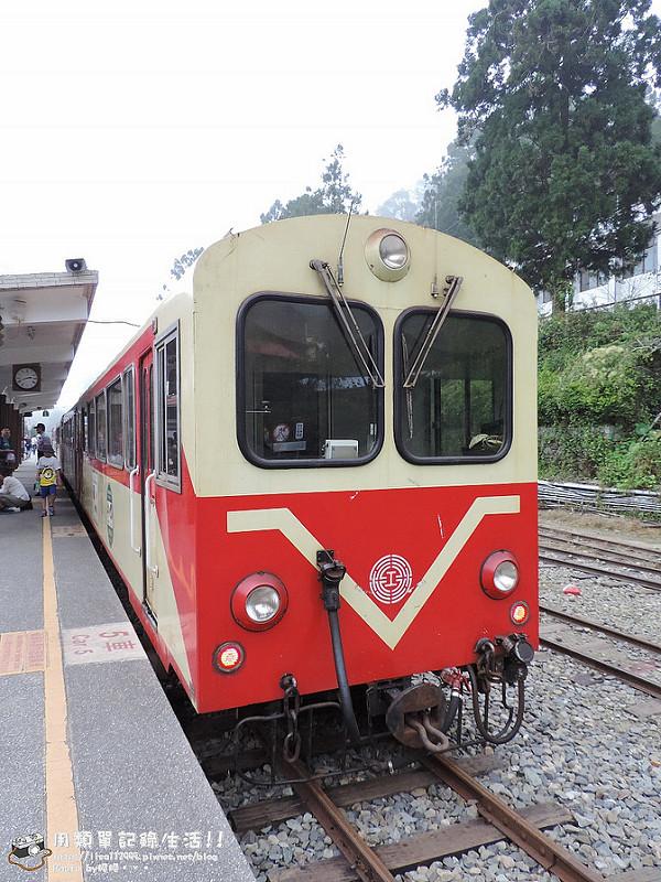 DSCN7337 (960x1280)